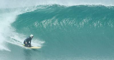 surf 8013 petit